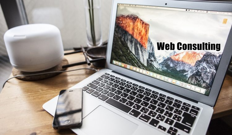 WebConsulting